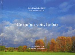 Ce qu'on voit, là-bas (Jean-Claude Dubois)